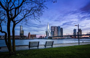 Erasmusbrug Rotterdam van Jeroen Mikkers