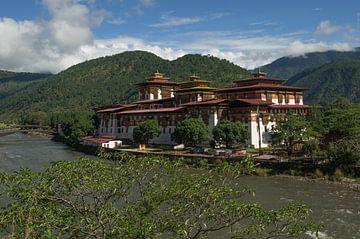 Punakha Dzong van Andrea Ooms