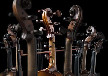 Diva de violina van Olaf Bruhn