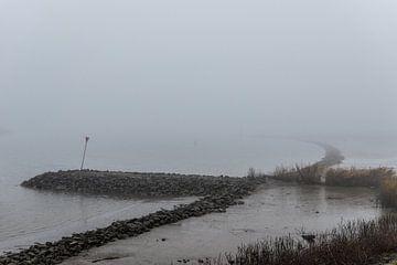 Nederlandse rivier in de mist overloopgebieden. van