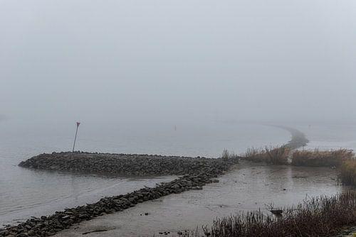 Nederlandse rivier in de mist overloopgebieden. sur