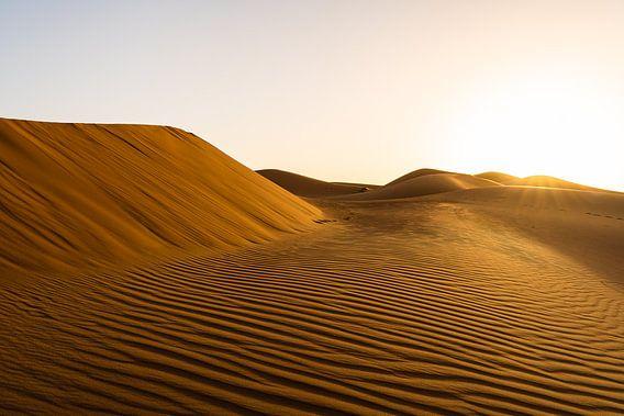 Zonsopgang in de woestijn