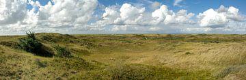 Panorama duinen Texel van Rene du Chatenier