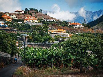 La Palma – Los Llanos von Alexander Voss