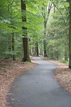 het pad naar... van Jan Heijmans