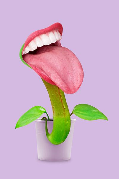 Vleesetende plant van Jonas Loose
