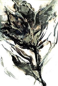 Schwarze Tulpe. von Ineke de Rijk