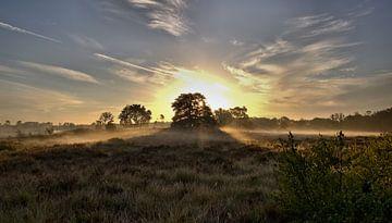 Mistige ochtend von Jeroen Grit