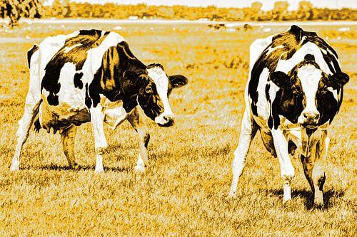 Zwartbont Koeien in de Weiland Goud