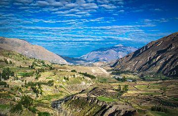 Landschap in de omgeving van Colca Canyon, Peru van