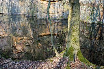 Spiegelung im Steinbruch 5