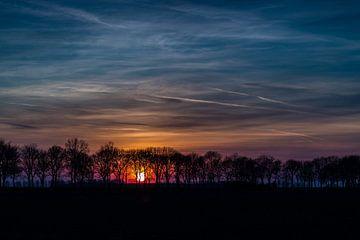 Boomdijk mit untergehender Sonne von René Groenendijk