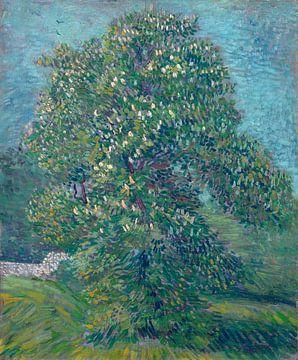 Kastanienbaum in Blüte, Vincent van Gogh