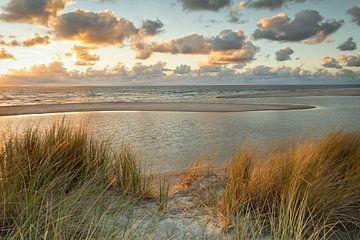 Dunes au coucher du soleil sur l'île de Texel,