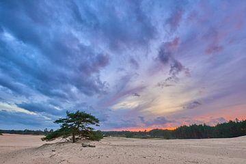 Regenwolken und Sonnenuntergang über dem Hulshorster-Sand von Jenco van Zalk