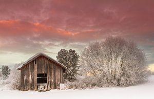 Een winterse dag in Zweden