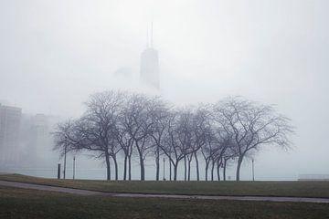 'Bomen', Chicago van Martine Joanne