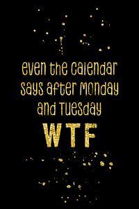 Text Art Gold EVEN THE CALENDAR SAYS WTF