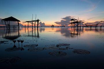 Fischernetze in den Feuchtgebieten von Phattalung, Thailand von Johan Zwarthoed