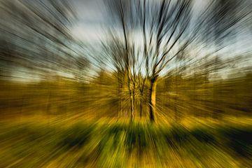 Aanstormend bos van Floris van Woudenberg