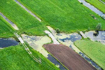De weilanden verbonden door kleine bruggen von Ineke Huizing