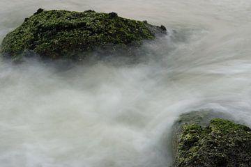 Wild Water en mist