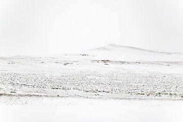 Mongolië sur Valerie Tintel