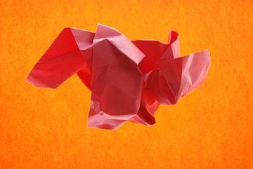 oranje rood van Brigitte van Ark