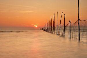 Visnetten bij zonsopkomst van