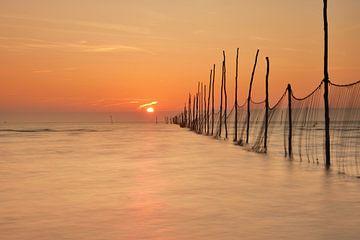 Visnetten bij zonsopkomst von John Leeninga
