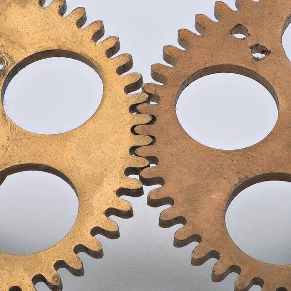 Gears van Hans Kool