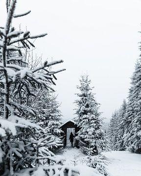 Kalte Hütte von Max Müller