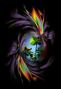 Fantasie in bloei - Rozen