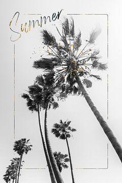 Palmen Impression | Sommer von Melanie Viola