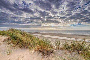 Der Strand und die Dünen auf Ameland von Niels Barto
