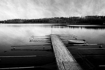 steiger in het meer sur robin waslander