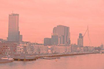 Rotterdam - Erasmusbrug en omgeving - in grijs-zalm tinten van Ineke Duijzer