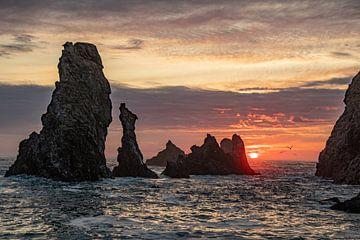 Aiguilles de Port Coton sur Belle Ile, Bretagne (France) au coucher du soleil sur Arthur Puls Photography
