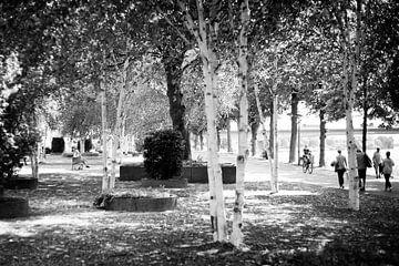 Lekker chillen in het Charles Eyckpark in Maastricht