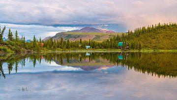 Meer in Wrangell-St. Elias National Park van Denis Feiner
