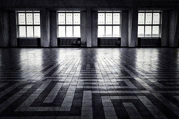 Kootwijk in zwart wit sur Sran Vld Fotografie