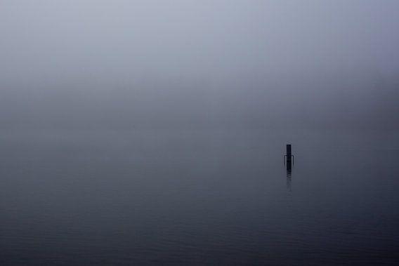 Mist over de Rijkerswoerdse Plassen