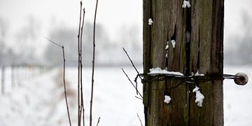 Fence in the snow von Sense Photography