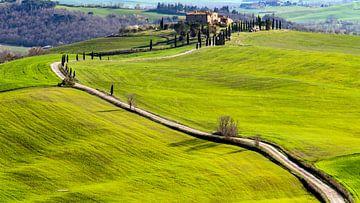 Toscaanse bochten in Panzano van Guy Lambrechts