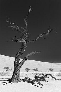 Sossusvlei Namibië (9) Zwart Wit van Adelheid Smitt