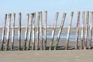 Strandpalen op Griend