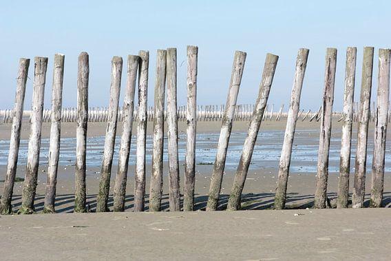 Strandpalen op Griend van Ronald Jansen