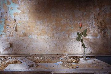 Eeuwig leven van Olivier Van Cauwelaert