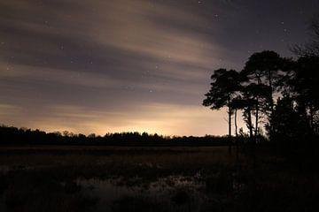 Naturschutzgebiet Kleinbylaer von Herman van de Bunt
