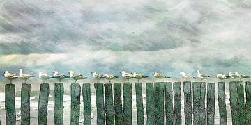 Möwen von Yvonne Blokland